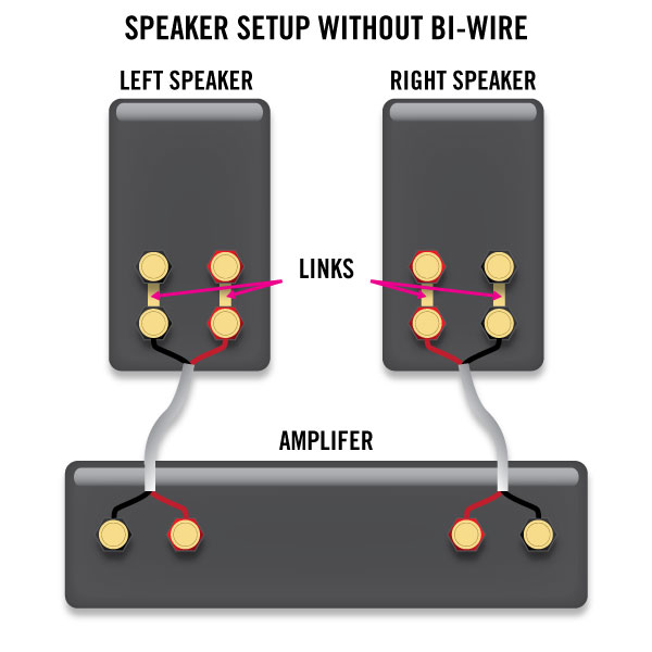 Bi-wire sense or nonsense? - General Forum - Computer Audiophile