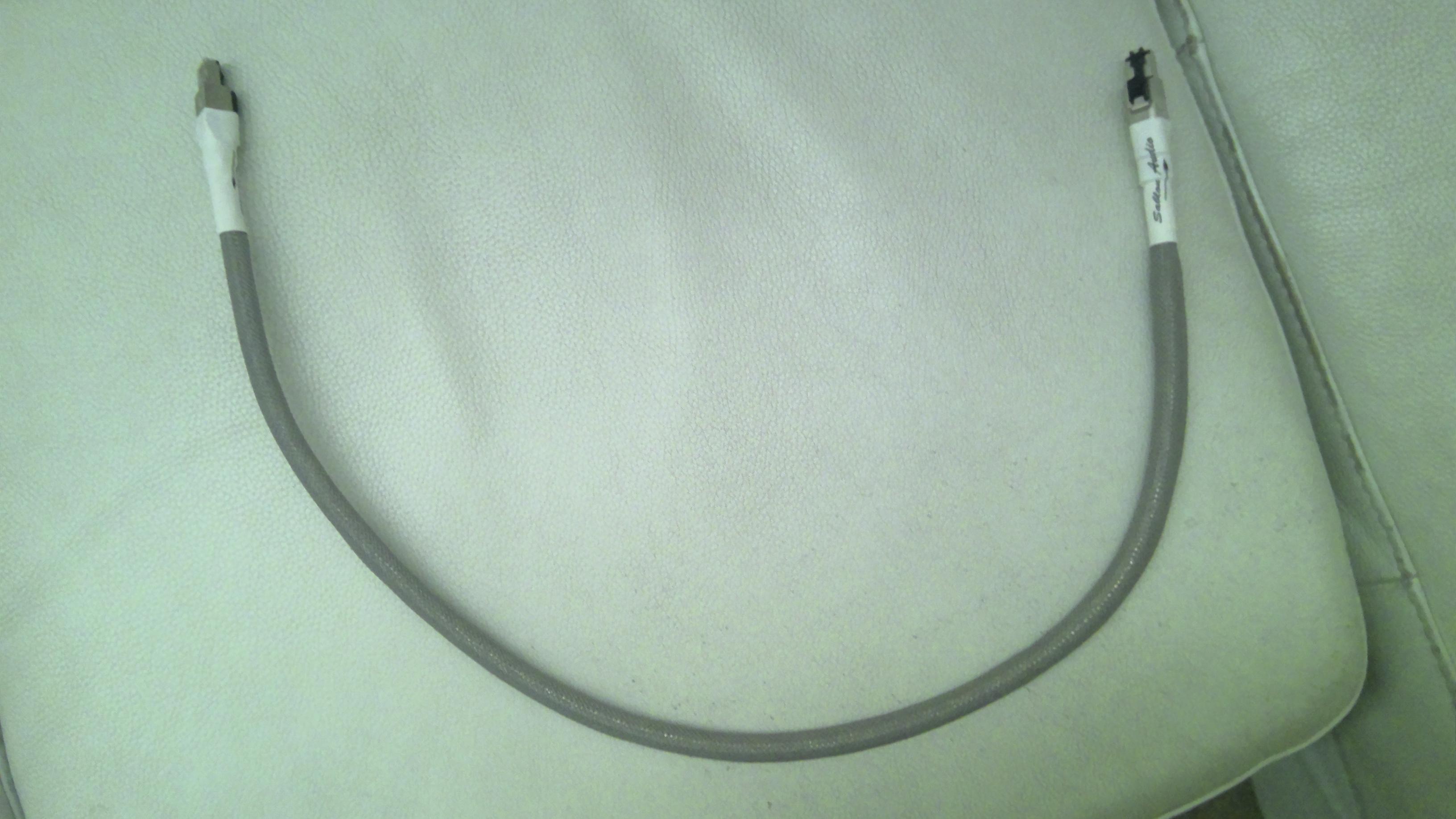 Sablon 2020 ethernet cable